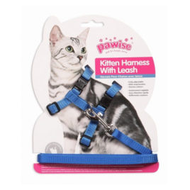 Pawise arnés y correa gatos (Azul)