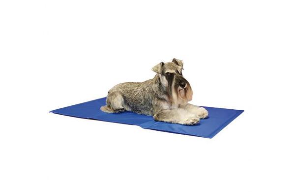 alfombra-ibanez-refrescante